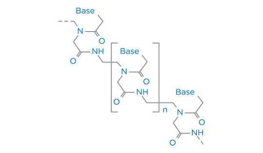 multipep2-peptide-nucleic-acids